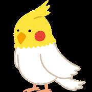 bird_okameinko.png