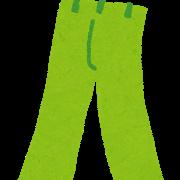 cloth_pants.png