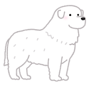 dog_great_pyrenees.png
