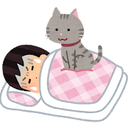pet_cat_omoi_sleep_woman.png