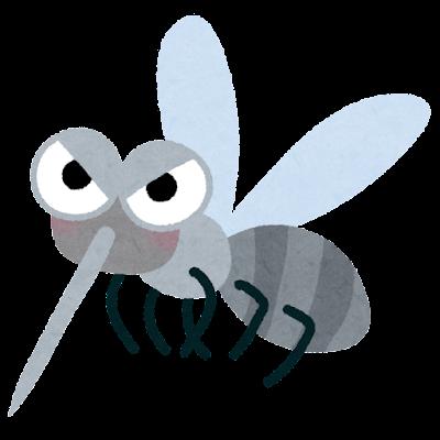 sonota_bug_ka.png